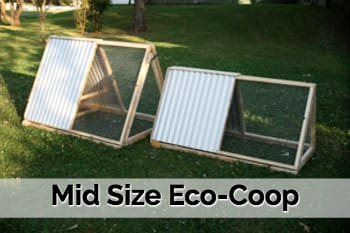 Rentachook midsize eco chicken coop 2 chooks sydney