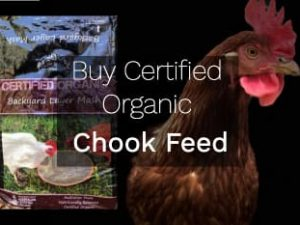 Chook Feed Organic Certified Rentachook Sydney