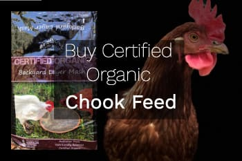 buy chicken feed sydney rentachook